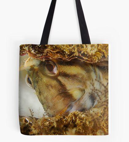 Bashful Blenny Tote Bag