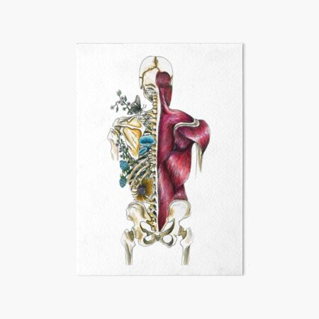 Human Skeleton Flora & Fauna - Skeletal Flower Anatomy - Anatomy Art  Art Board Print