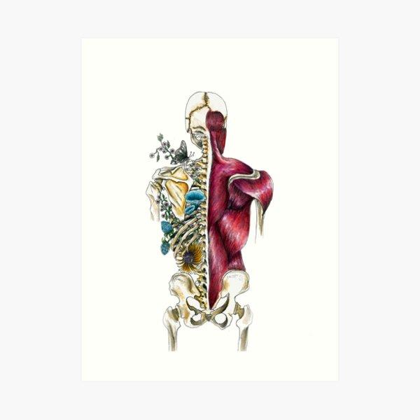 Human Skeleton Flora & Fauna - Skeletal Flower Anatomy - Anatomy Art  Art Print