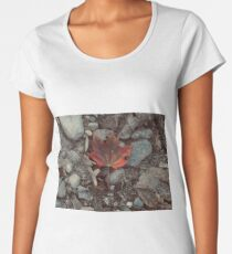 the oncoming cold Women's Premium T-Shirt