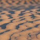 Sand ripples  by Will Hore-Lacy