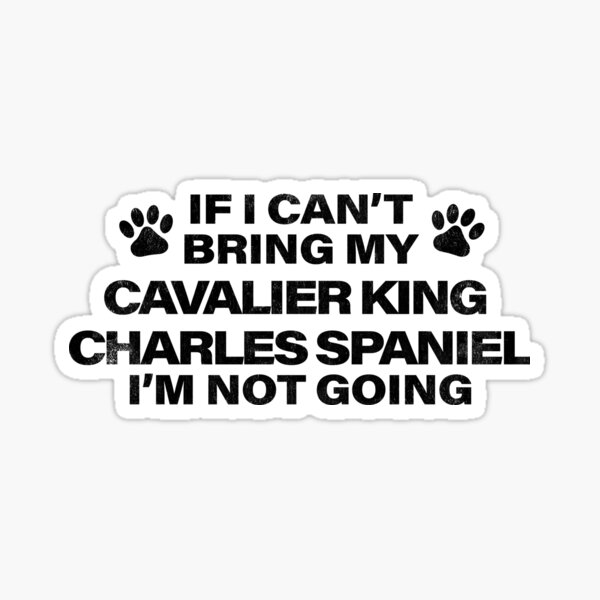 If I Can't Bring my CAVALIER KING CHARLES SPANIEL, I'm Not Going Sticker