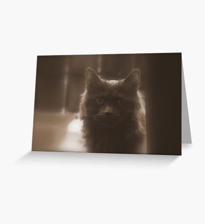 Baby Girl in Sepia Greeting Card