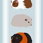 Guinea Pig Trio by tanzelt