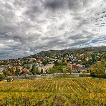 Klosterneuburg Weidling, Austria by Mythos57