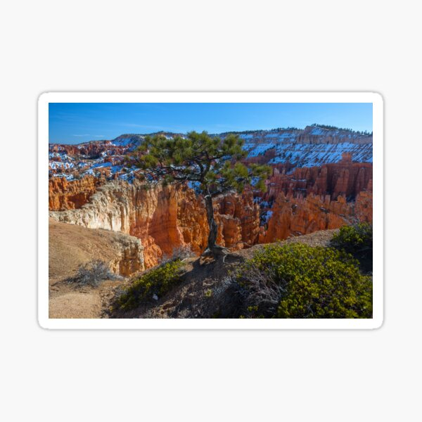 Bryce Canyon Close to the Edge Sticker