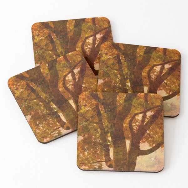 by my window Coasters (Set of 4)