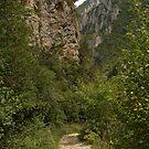 The Gorges de la Frau by WatscapePhoto
