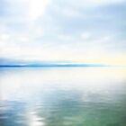 Lake Neuchatel by Angelika  Vogel