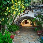 Paleokastritsa Monastery on Corfu [Greek Island] by Yukondick