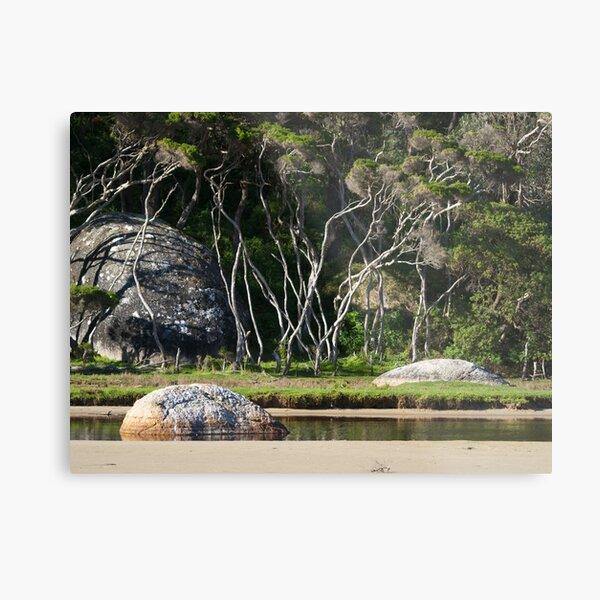 Tidal River, Wilsons Promontory, Victoria. Metal Print