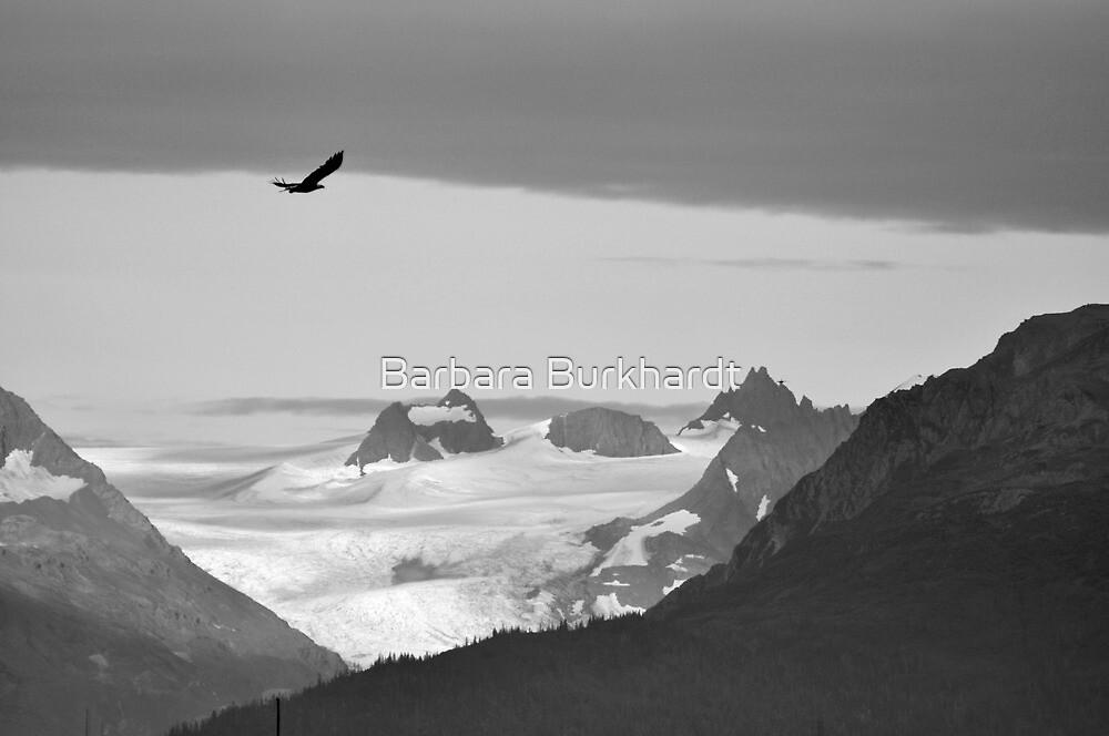 The Grand & The Mighty by Barbara Burkhardt