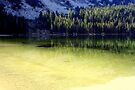 """Tenaya Lake ~ Yosemite National Park"" by Lynn Bawden"