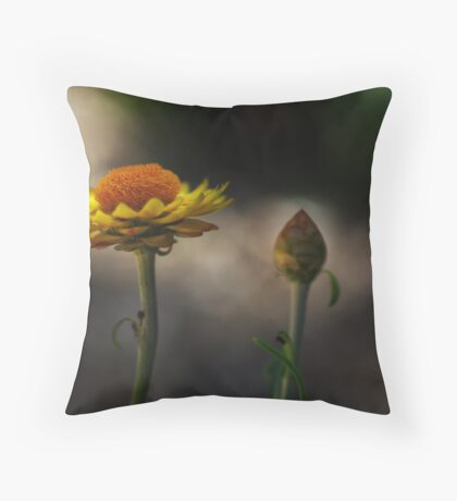 the morning paper daisies Throw Pillow