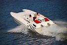Damn the torpedo's full speed ahead.... by John Schneider