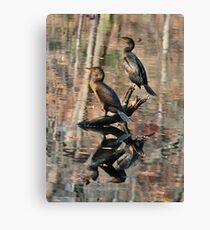 Cormorants Canvas Print