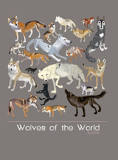 «Wolves of the world (Poster)» de belettelepink