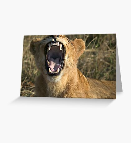 Hey Doc, Can you please check my front molar? Greeting Card