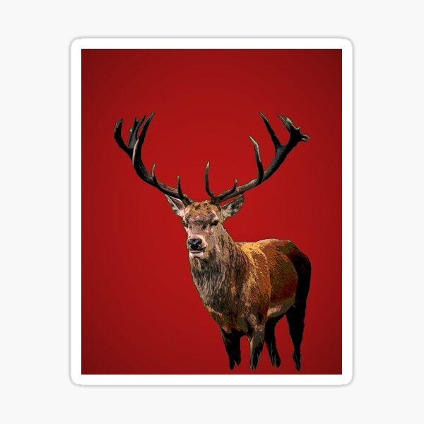 Stag in Red Sticker