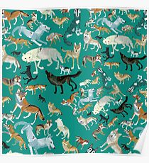 Wolves of the World (Green pattern) Póster