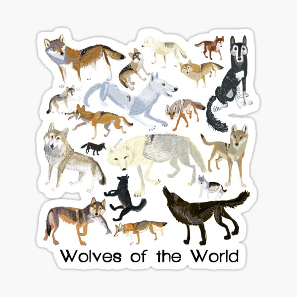 Wolves of the World (Green pattern) Sticker