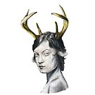 Antlers by DanFranklin