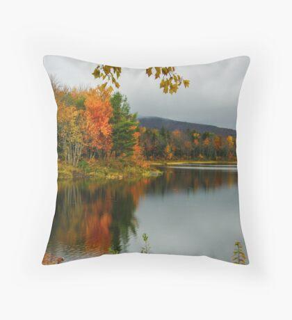 Fall At Pillsbury State Park, Washington, NH Throw Pillow