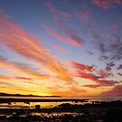 tamar river sunset2 by dmaxwell