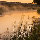 Dawn Forth and Clyde Canal, Kilsyth, Scotland by Cliff Williams