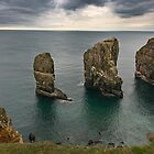 Elegug Stacks, Pembrokeshire Coast Wales by Cliff Williams