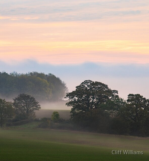 Mist near Great Witley Worcestershire England by Cliff Williams