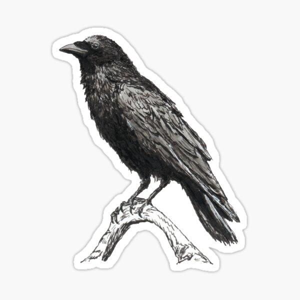 Raven M Sticker