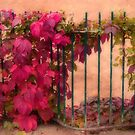 Victorian Autumn by Christine Lake