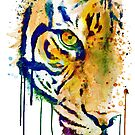 Half Faced Tiger by Marian  Voicu