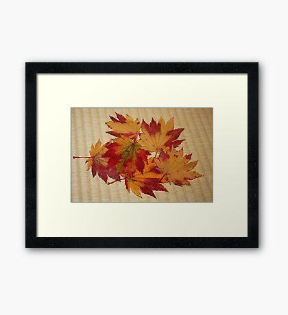 Momiji Tatami Framed Print