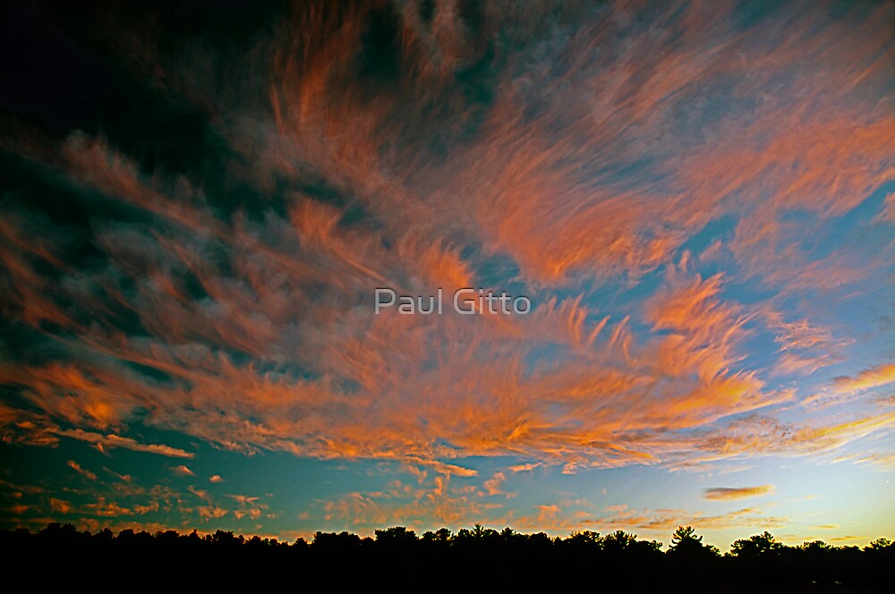 Tongues of Fire by Paul Gitto