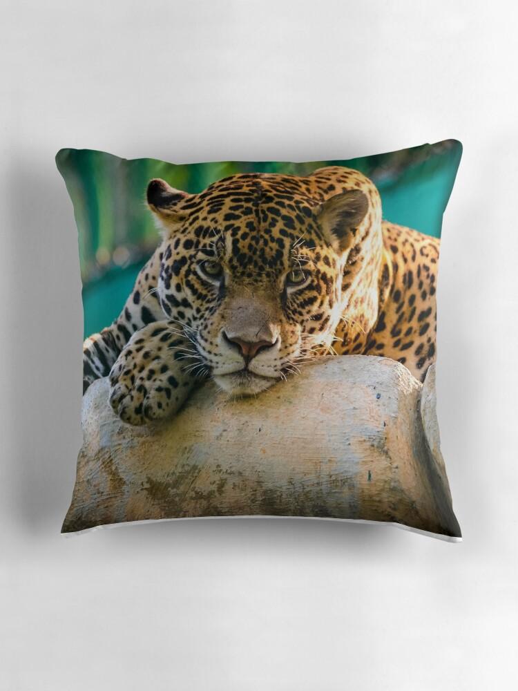 Throw Pillows With Wildlife :