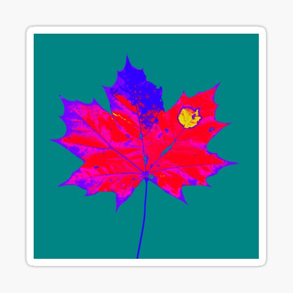 Herbst Blatt Farbenfroh Sticker