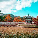 Autumn in Seoul by Phrames