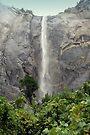 """""""Bridalveil Falls"""" by Lynn Bawden"""