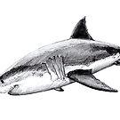 «Gran tiburón blanco» de Chloé Yzoard