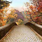 October Overpass by Jessica Jenney