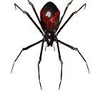 Halloween Spider by loganferret