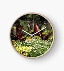 Flower Garden at Greenwich Park, London, England  Clock