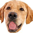 Golden Retriever by awesomedsign
