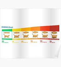 CHONK Chart For Cats Poster