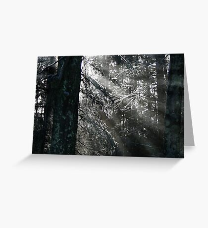 ICY RAYS Greeting Card
