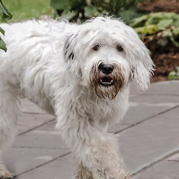 Do I Know You?? by heatherfriedman