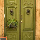 Green Door, Gamla Stan, Stockholm Sweden by kawe