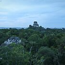 Tikal National Park #12 by Rachel Jeffrey